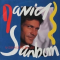 David Sanborn - Change Of Heart / Warner Bros.