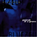 Bluezeum - Portrait of a Groove
