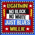 Lightin Willie - No Black no white just blues