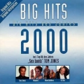 Big Hits 2000 - Various
