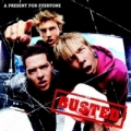 Busted - A Present for Everyone