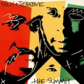Sly & Robbie - The Summit