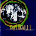 Capercaillie ‎– Beautiful Wasteland